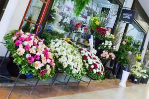 Florista Santos: Blumenhändler