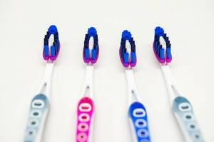 Four toothbrushes in a row