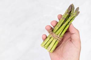 Fresh Asparagus in the hand with copy space