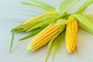 Fresh corn ears with leaves on white wooden background (Flip 2019)