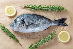 Fresh Dorado fish with lemon slices, spices and fresh rosemary on parchment