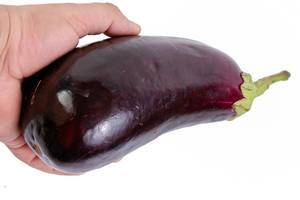 Fresh Eggplant in the hand above white background