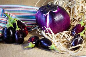 Fresh eggplants