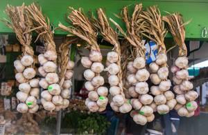 Fresh Garlic at the Market (Flip 2019)