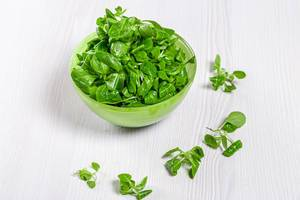 Fresh green corn sprouts in green bowl on white wooden background (Flip 2019)
