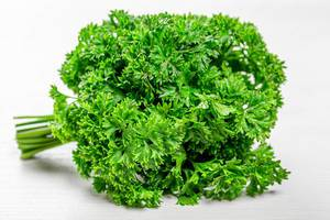 Fresh green parsley on white wooden background