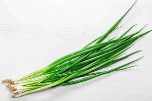 Fresh green young onion (Flip 2019)