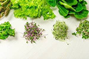 Fresh micro greens, Romaine lettuce, lettuce and asparagus on white wooden background (Flip 2019)