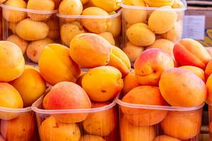 Fresh orange apricots in plastic tray (Flip 2019)
