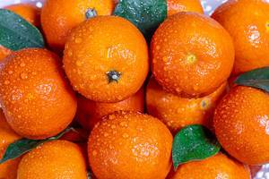 Fresh oranges tangerines with leaves and water drops (Flip 2019)