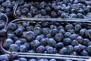 Fresh ripe blueberries (Flip 2019)