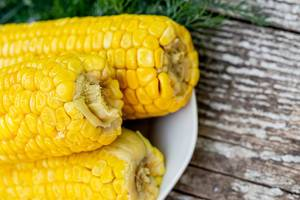 Fresh ripe boiled corn close-up