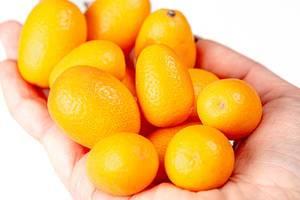 Fresh ripe kumquat fruit in a woman