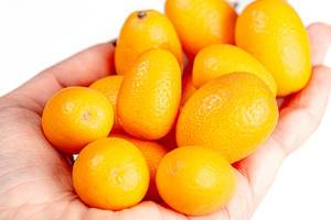 Fresh ripe kumquat fruit in a woman