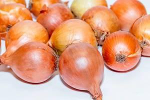 Fresh ripe onions  Flip 2019