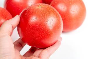 Fresh ripe tomato with water droplets in a woman