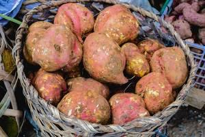 Fresh root crops on old basket (Flip 2019)