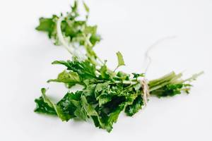 Fresh rucola on white background.