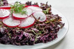 Fresh salad with lettuce and radishes on a white plate