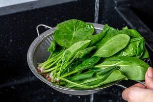 Fresh wet spinach with water drops (Flip 2019)
