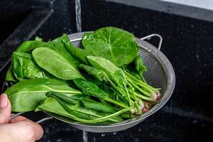 Fresh wet spinach with water drops