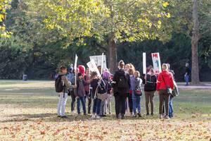 Fridays-for-Future-Bewegung in Köln: Kinder und Schulgruppen nehmen am Protesttag teil, um für einen Wandel der Klimapolitik zu demonstrieren