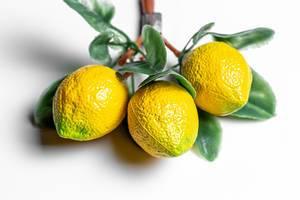 Fridge magnets yellow lemons on a white background
