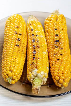 Fried young corn on plate