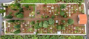 Friedhof in Ponta do Sol
