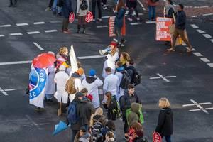 Friedliche Demonstranten für das Klima in Köln am 29.11.2019