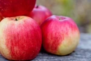 Frische Bio-Äpfel auf einem Holztisch