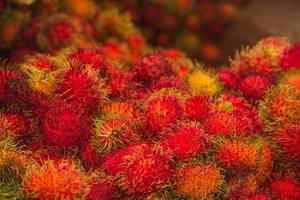 Frische Rambutan-Früchte in der Nahaufnahme