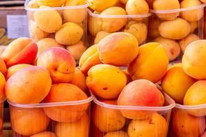 Frische reife Aprikosen in Plastikschalen in Verkaufsauslage