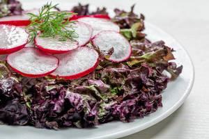 Frische Salatblätter mit Radieschenscheiben auf einem weißen Teller