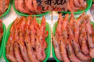 Frische Shrimps