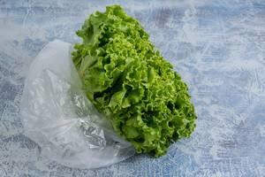 Frischer grüner Salat in Plastiktüte verdeutlicht Umweltverschmutzung und fordert Umweltschutz