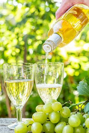 From the bottle poured white wine into glasses bunch of fresh grapes on a summer day in nature