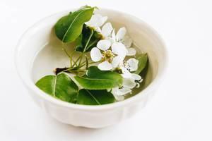 Frühlingsblüte in einer Tasse mit Wasser. Tischdekoration