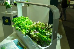 Full automated indoor T-series kitchen garden with lighting by tregren
