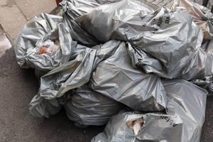 Full garbage bags of the AWB Köln