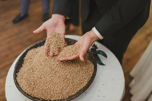 Full Hands Of BArley Seeds (Flip 2019)