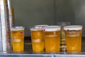Fünf Bier in Plastikgläser mit dem Tomorrowland-Slogan stehen auf einem Metalltisch