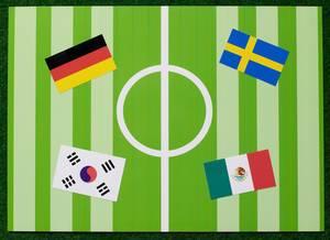 Fußball-Weltmeisterschaft 2018 Gruppe F