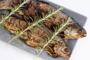 Gebackener, ganzer Forellen-Fisch auf dem Teller mit Rosmarin