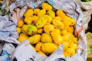 Gelbe Mango auf einem Markt, in Zeitungspapier gewickelt
