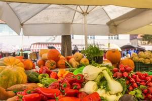 Gemüse auf dem Markt in Ljubljana - Kürbisse, Paprika, Fenchel, Radischen und Rüben