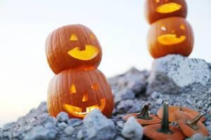 Geschnitzte Kürbisse als Halloween-Deko auf einem steinigen Boden