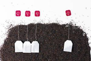 Getrockneter Tee und neue Teebeutel auf weißem Hintergrund