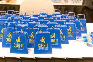 Gewichte von Cure it Foundation