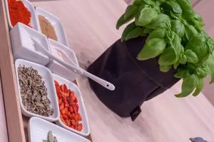 Gewürze und Basilikum Küchenpflanze